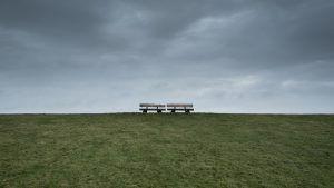 ansiedad y soledad